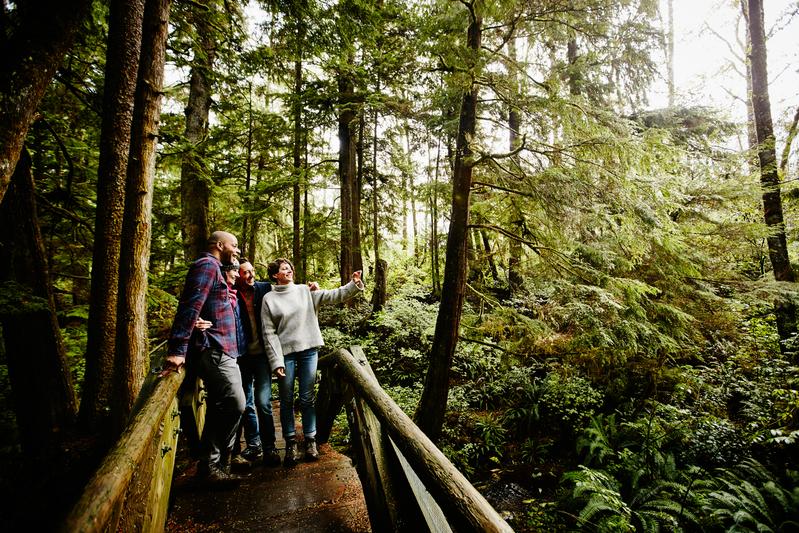 Eco-tourism makes a big impact on the environment